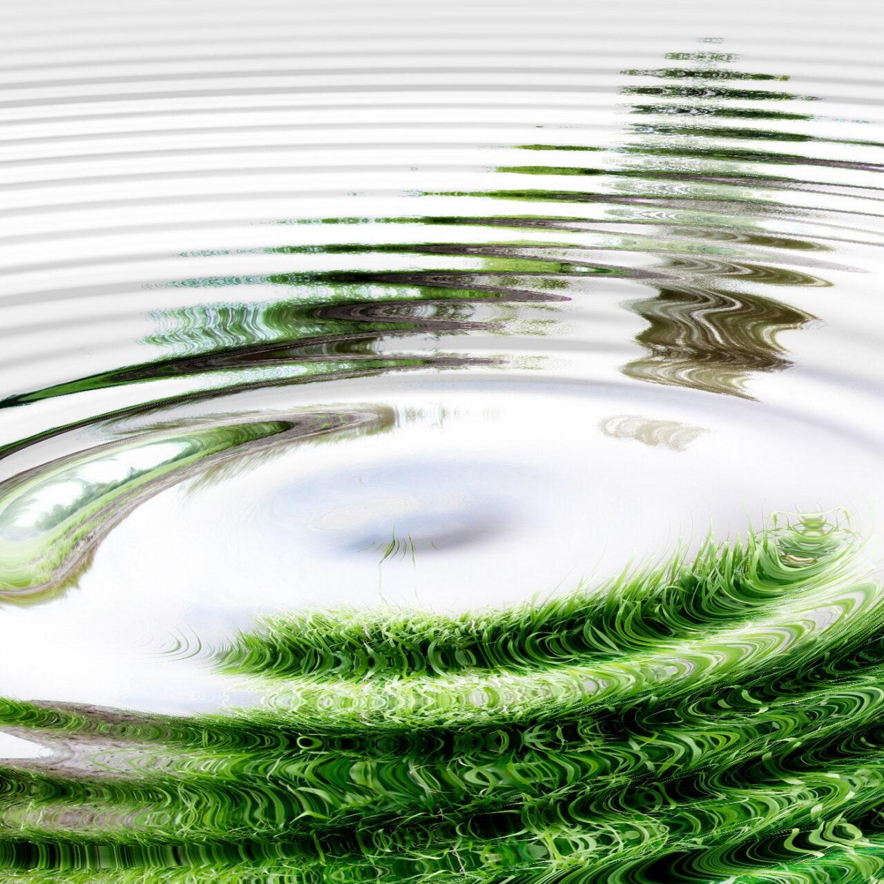 Danske Invest legt neuen globalen Nachhaltigkeitsfonds auf