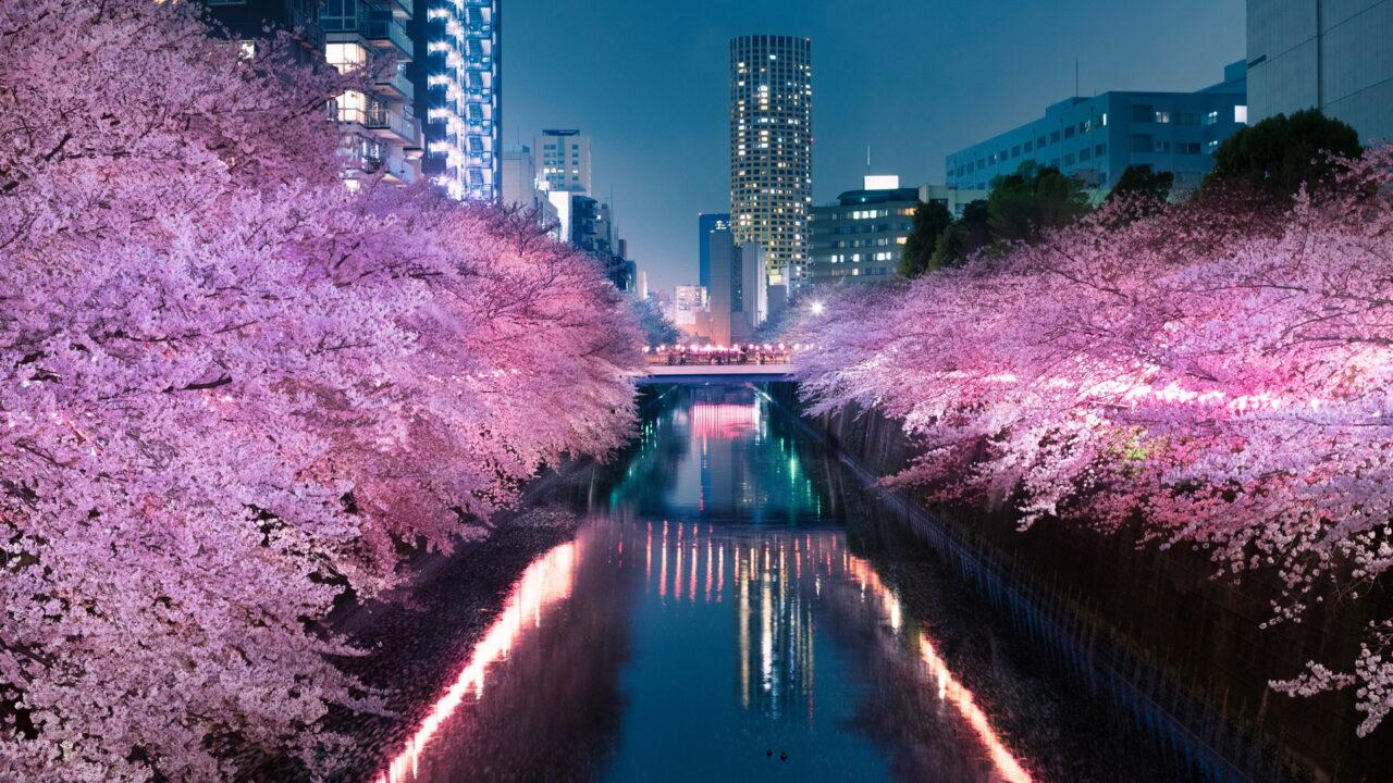 https://intelligent-investors.de/wp-content/uploads/2020/09/Japan_Kirschblüte_2-1280x720.jpg