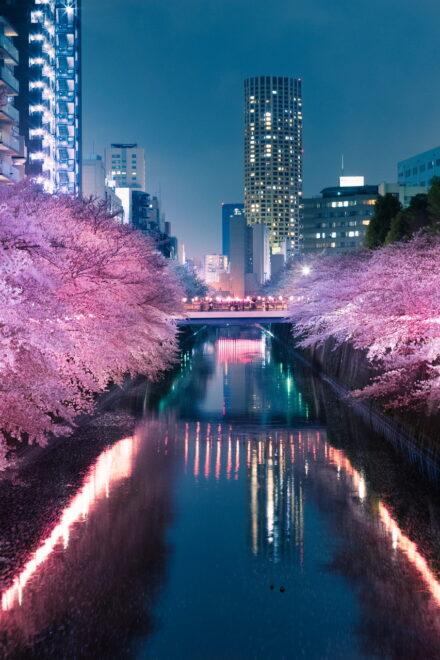 Savills schaut gen Japan