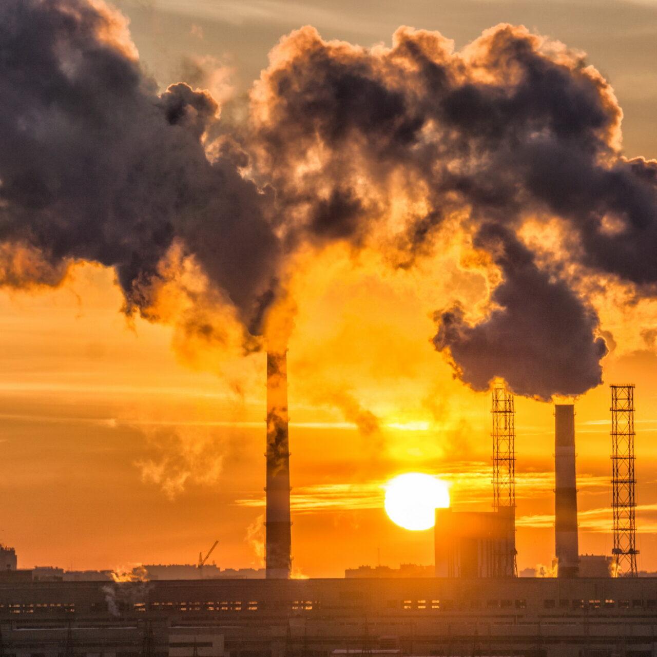 Gemeinsam auf fossile Brennstoffe verzichten
