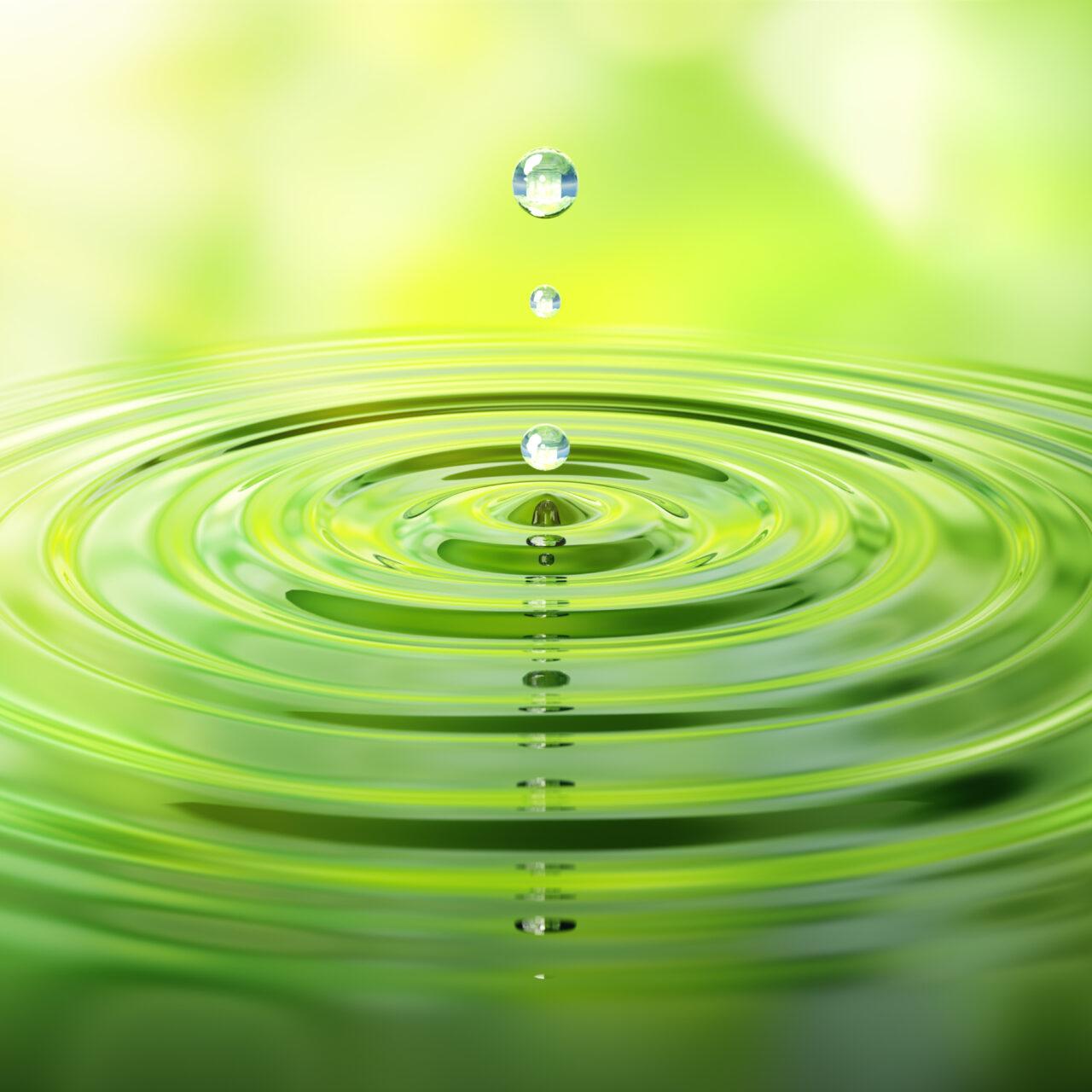 Das Potenzial grüner Anleihen