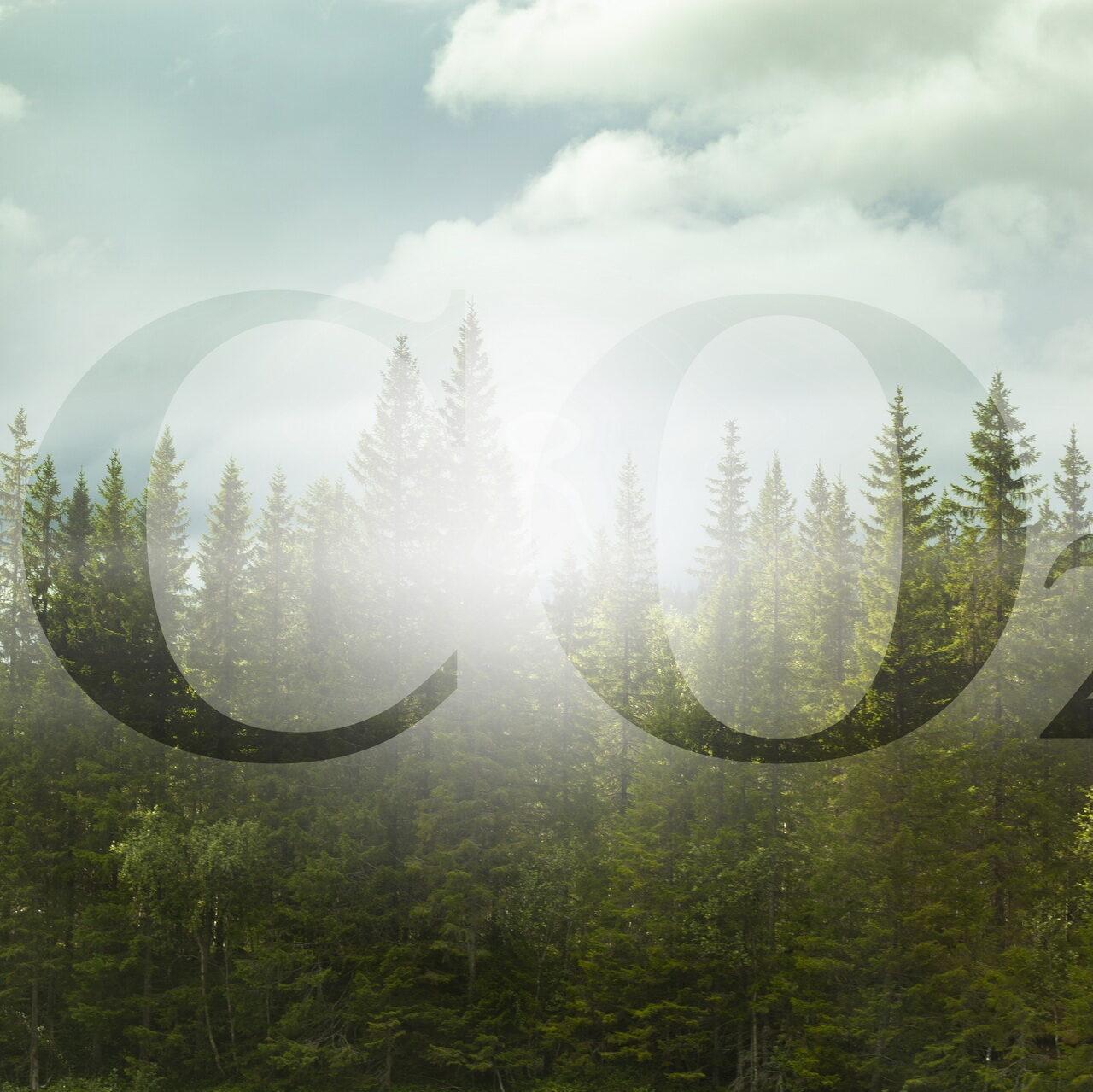 Emissionsneutralität ist Motto der Stunde